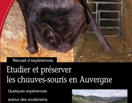Etudier et préserver les chauves-souris en Auvergne