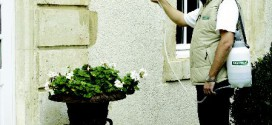 Nettoyant de façade Igistone
